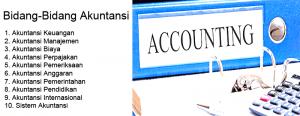 Bidang Bidang Akuntansi