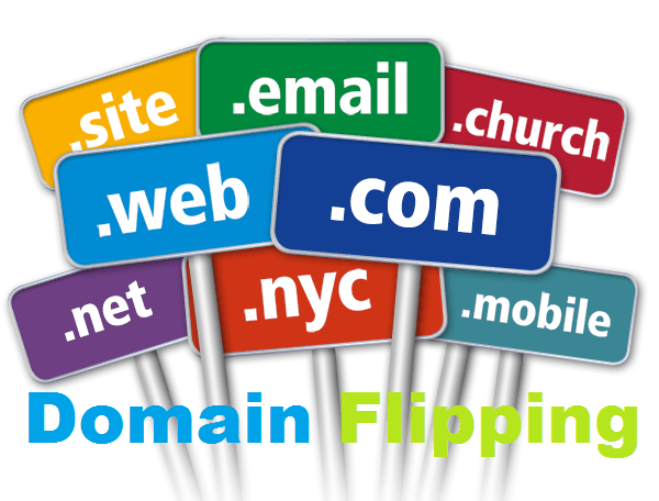 Domain-Flipping-business