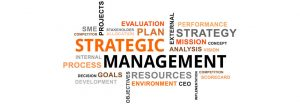 fungsi management strategi